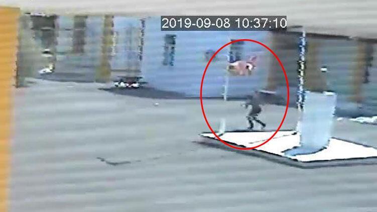 KKTC'de skandal olay! Polis her yerde Türk bayrağını indiren Rum'u arıyor