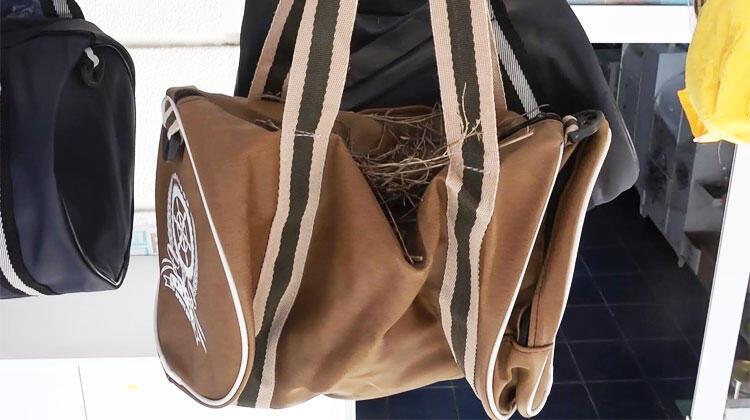 İş yerinde satılan çantaya yuva yaptı!