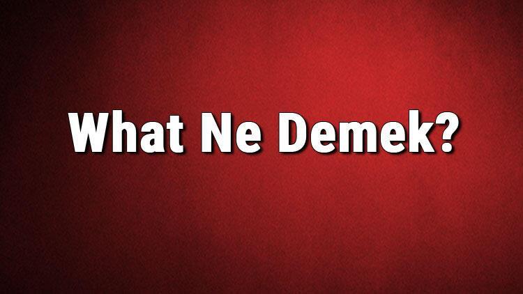 What Ne Demek? What Kelimesinin Türkçe Anlamı Nedir? - Son Dakika Flaş  Haberler