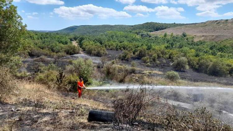 Silivri'de TEM kenarındaki ağaçlık alanda yangın