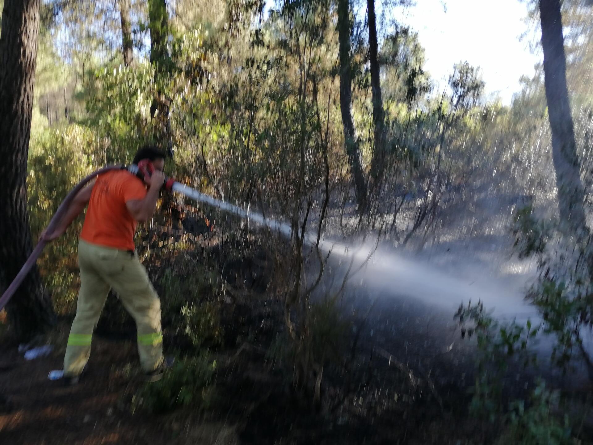 Aydos Ormanı'nın iki farklı noktasında çıkan yangın söndürüldü