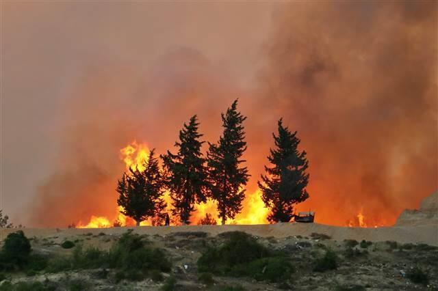Adana'daki orman yangınına havadan müdahale tekrar başladı - Haberler  Hürriyet