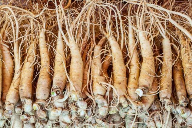Ginsengin Kanıtlanmış 7 Sağlık Faydası
