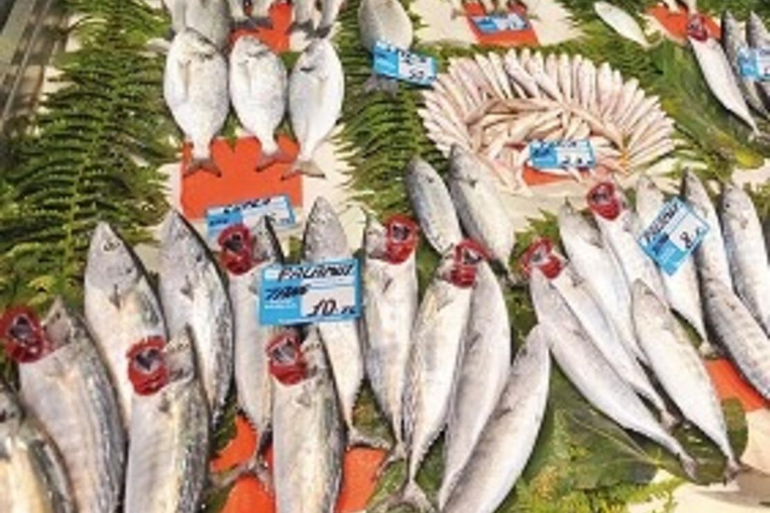 Balık almak için en iyi 10 adres