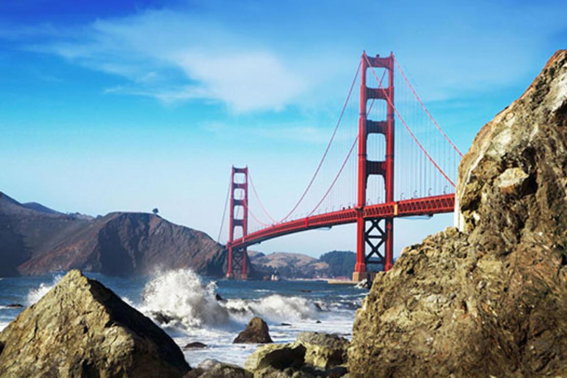 Tweet tweet San Francisco