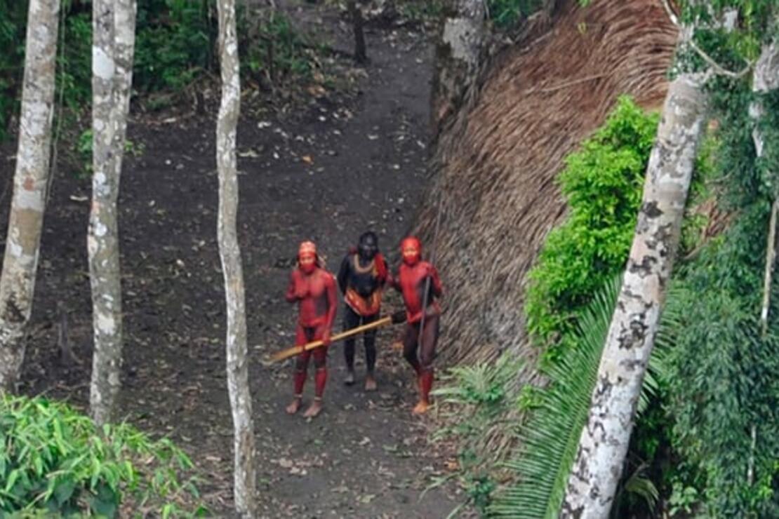 Javari Vadisi'nde dünyadan izole yaşayan kabileyi katlettiler