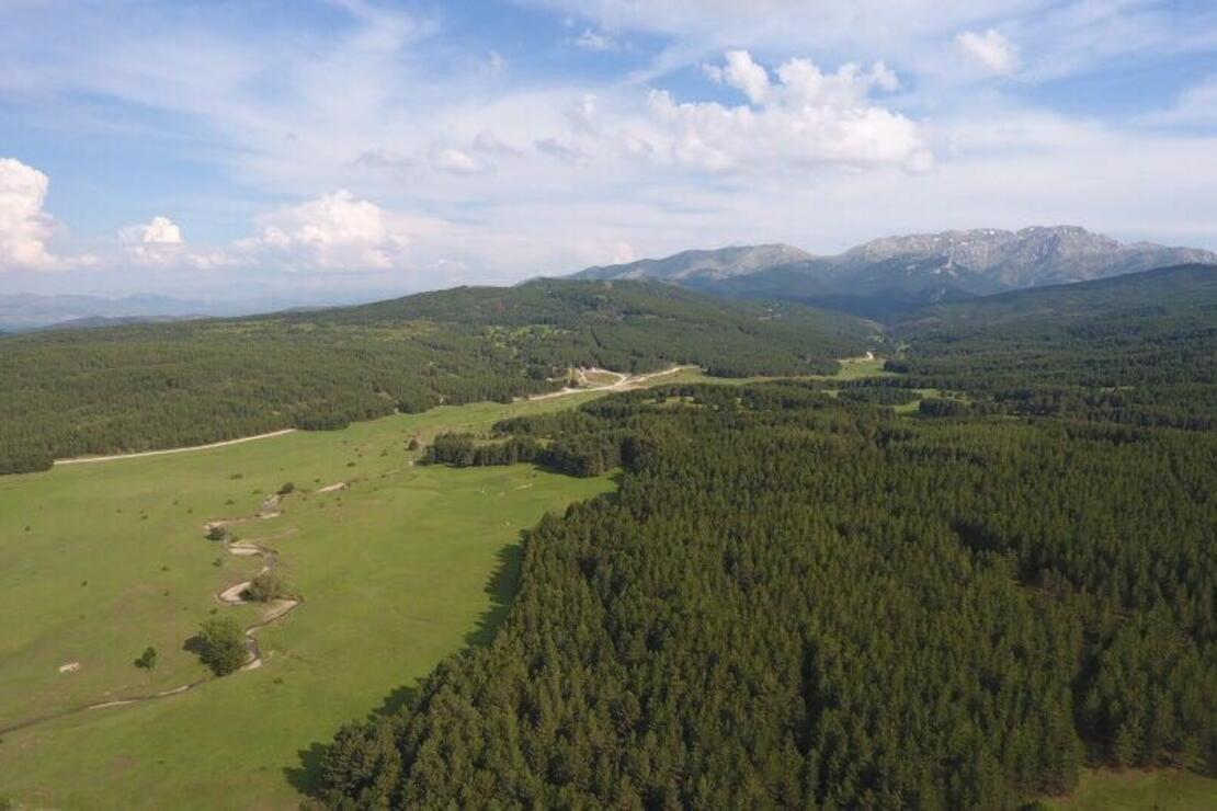 Ege'nin Çatısı; Honaz Dağı Milli Parkı - Seyahat Haberleri