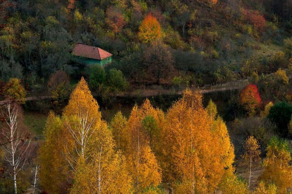 Drakula'nın peşinde saklı cennet: Transilvanya