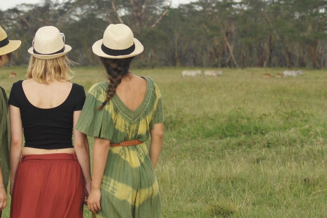 Yeni başlayanlar için Afrika'da safari