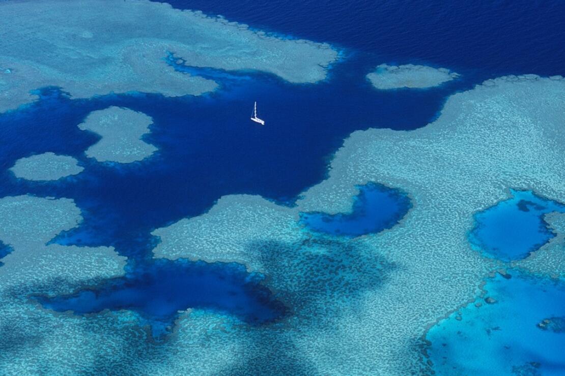 Büyük Set Resifi'ni robotlar korumaya başlıyor