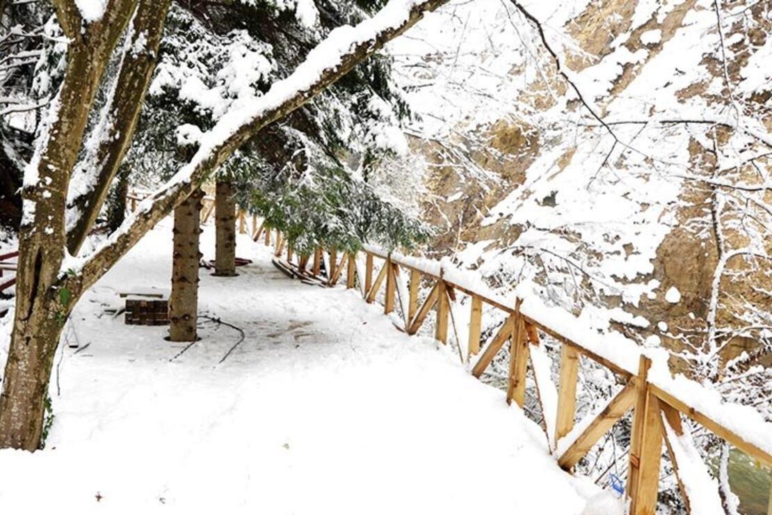 Trabzon'da doğayla iç içe yürüyüş parkuru açıldı