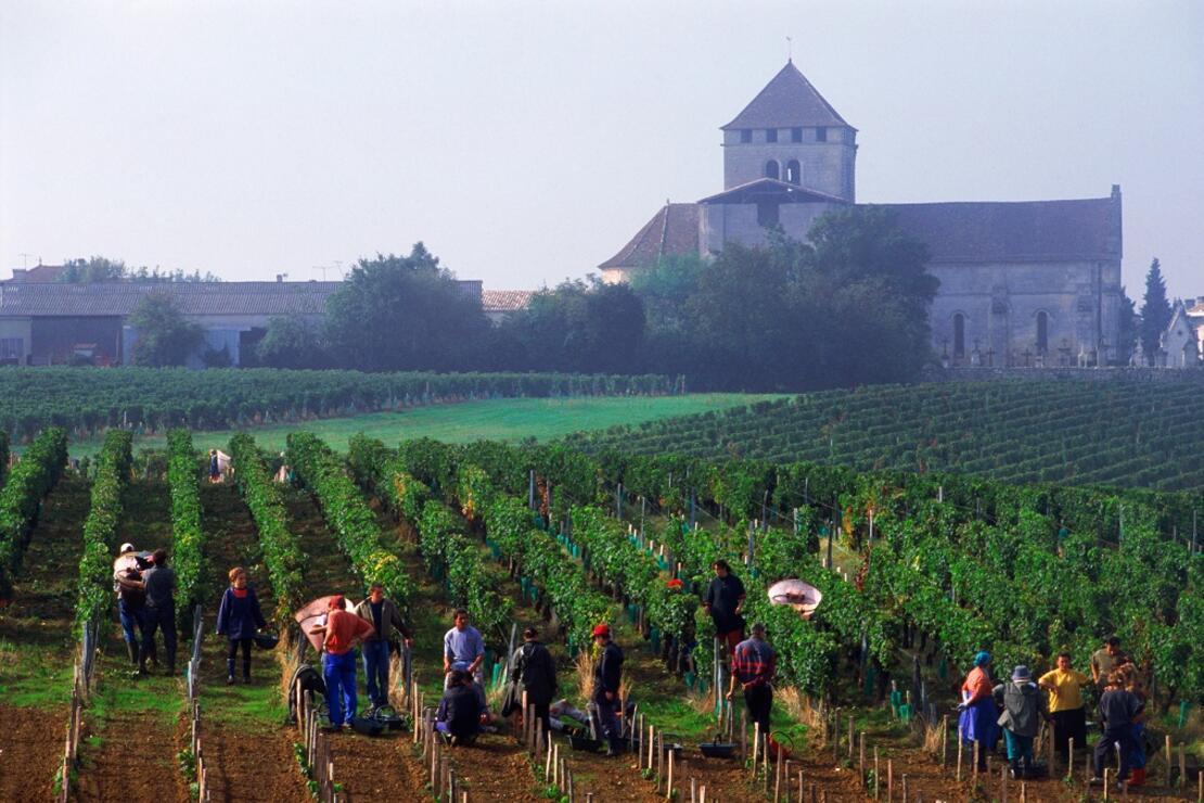 Nehir kıyısındaki hedonist: 36  saatte Bordeaux