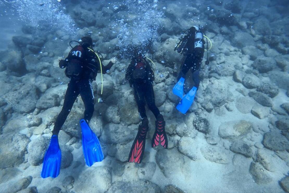 Antalya'nın muhteşem su altı dünyası