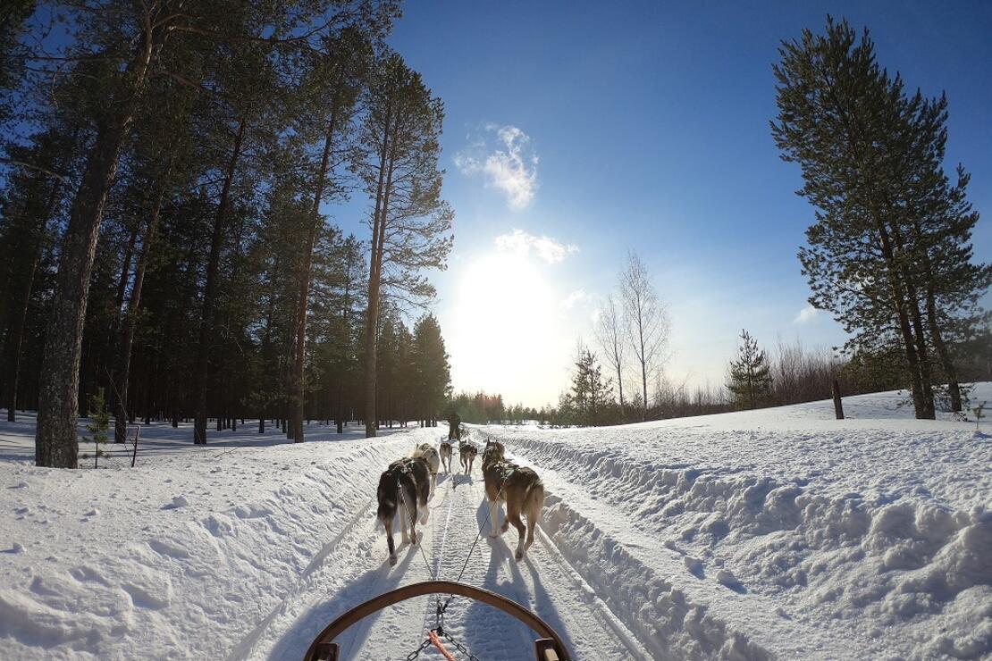 Lapland: Kuzeyin sönmeyen ateşi