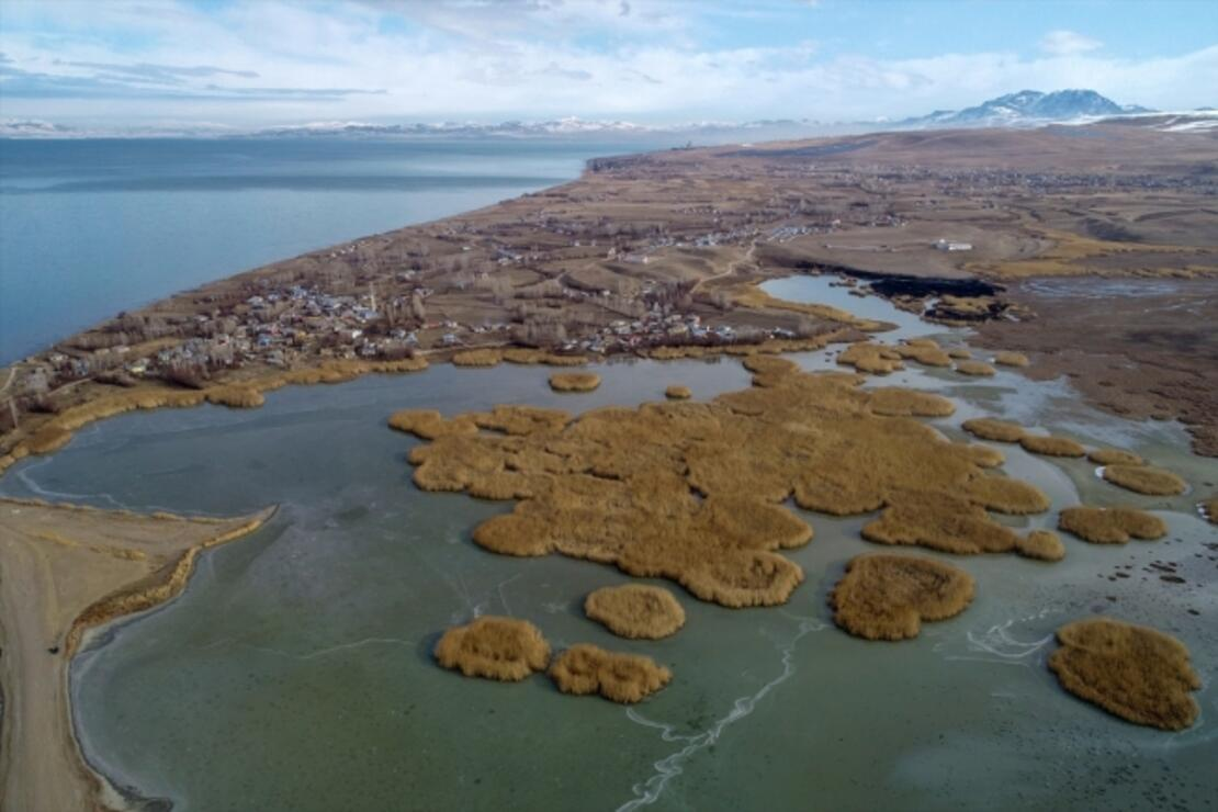 Van Gölü Havzası göçmen kuşlara ev sahipliği yapıyor