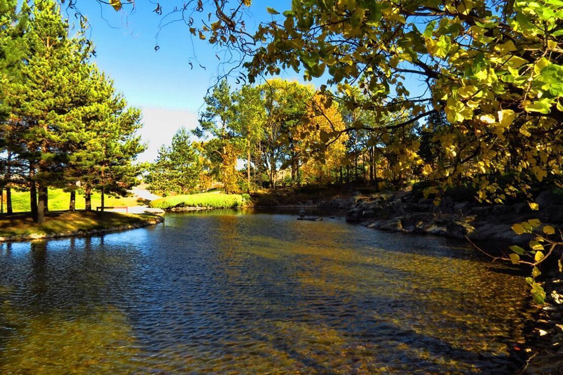 İç Anadolu'da bir vaha: Japon Bahçesi