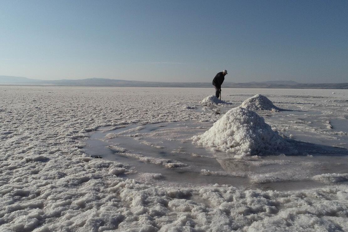 Tuzla gölü kesin korunacak hassas alan olarak ilan edildi