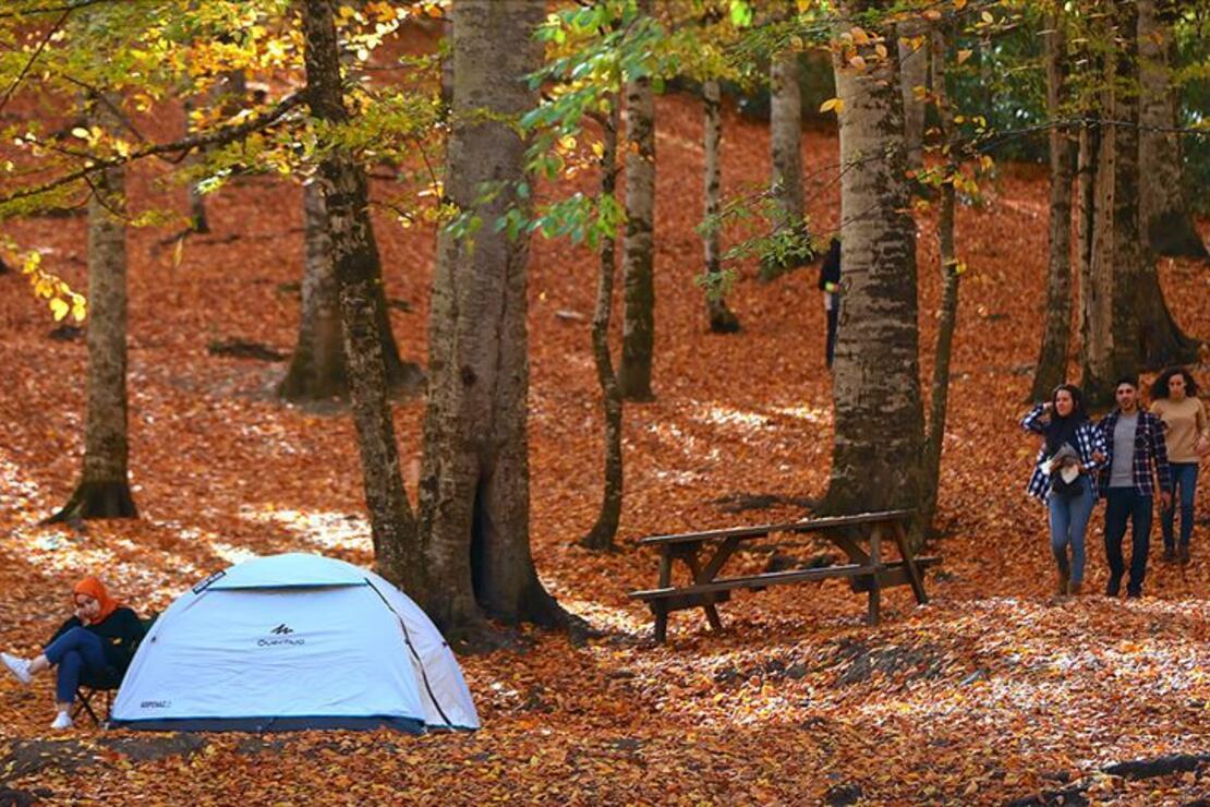 Ilgaz Dağı Milli Parkı'nda kamp alanları belirlenecek