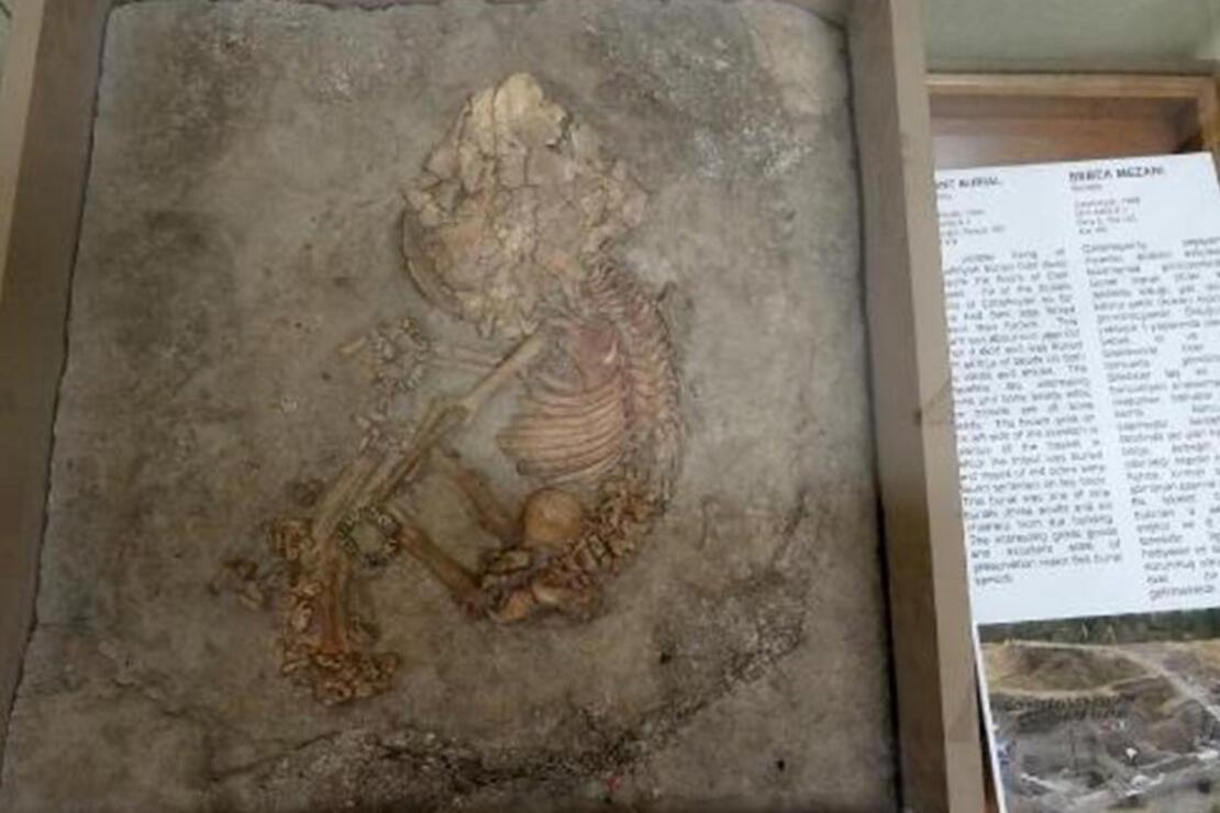 Konya Arkeoloji Müzesi Nerede? Konya Arkeoloji Müzesi Tarihçesi, Eserleri, Giriş Ücreti Ve Ziyaret Saatleri (2020)
