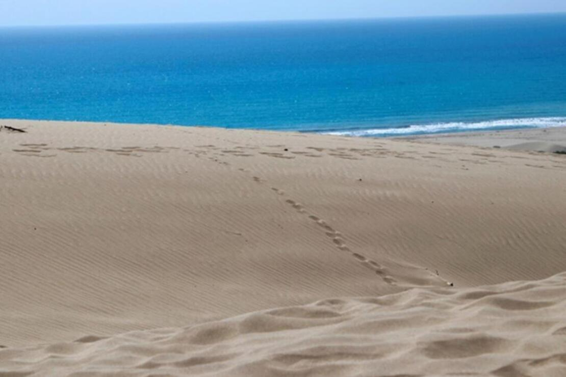 Patara Plajı Nerede Ve Nasıl Gidilir? Patara Plajı Özellikleri, Kamp İle  Konaklama Detayları Ve Giriş Ücreti (