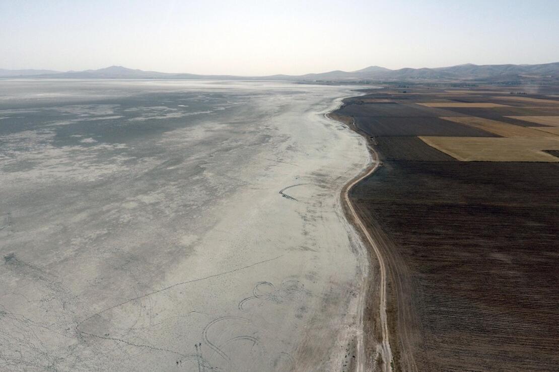Kuş cenneti olan Seyfe Gölü kurudu