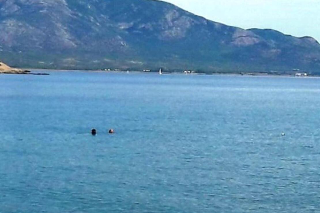Datça Plajları 2020 - Datça'da Denize Girilecek En İyi Ücretli Ve Ücretsiz (Halk) Plajları Listesi