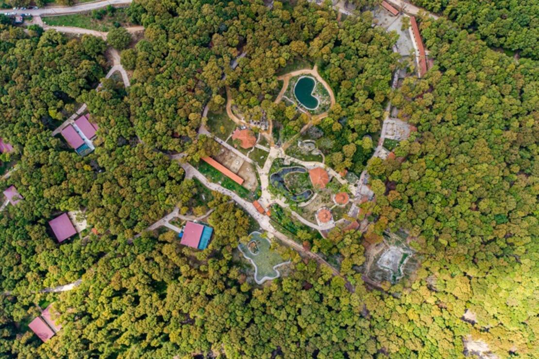 Kocaeli'deki Avrupa'nın en büyük doğal yaşam parkı 5 milyon ziyaretçiyi ağırladı