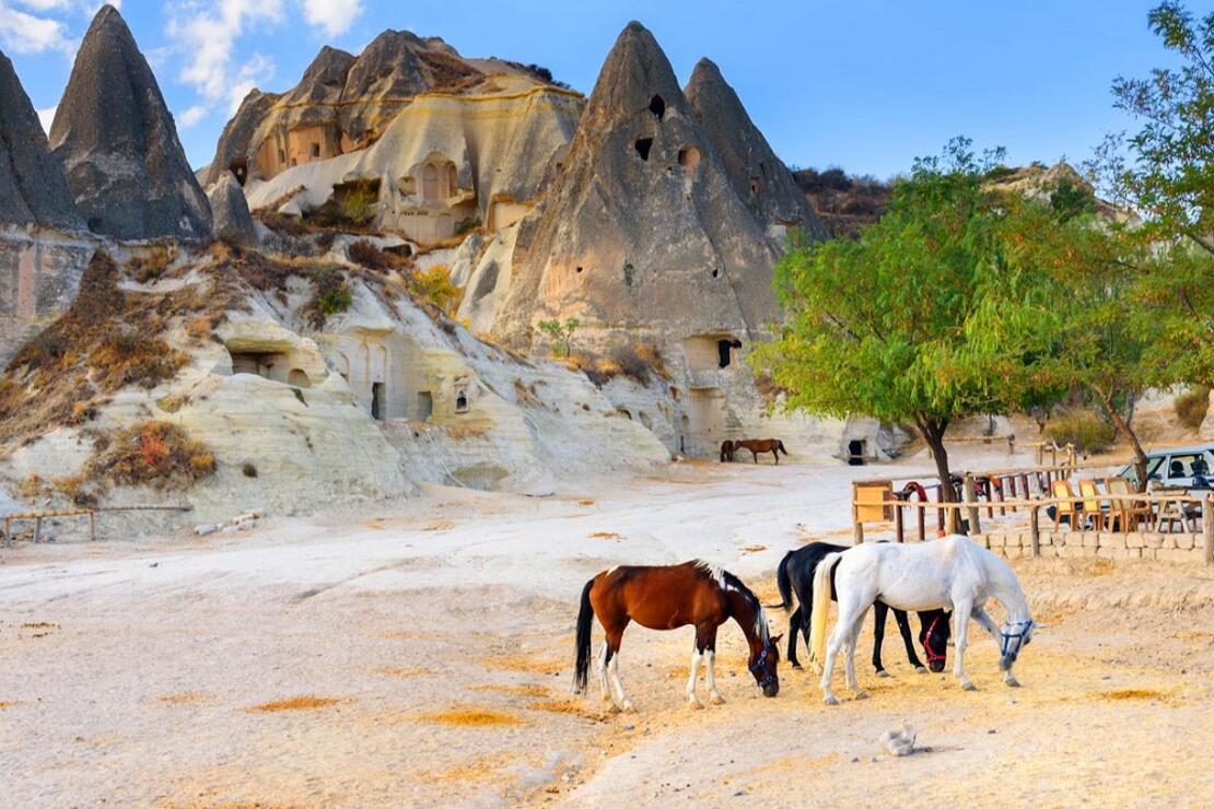 Doğa ve tarihin uyumu: 'Güzel Atlar Ülkesi' Kapadokya