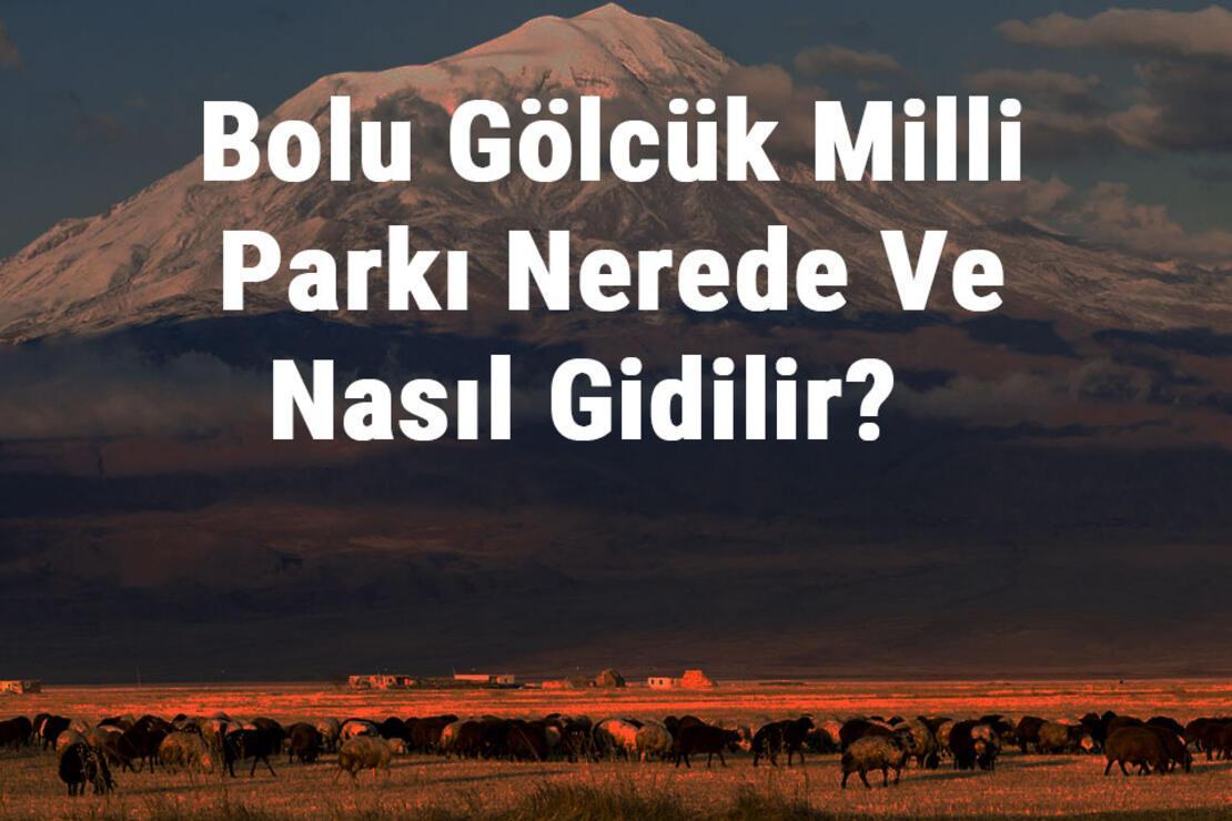 Bolu Gölcük Milli Parkı Nerede Ve Nasıl Gidilir? Bolu Gölcük Milli Parkı Konaklama, Kamp, Giriş Ücreti Ve Özellikleri Hakkında Bilgi
