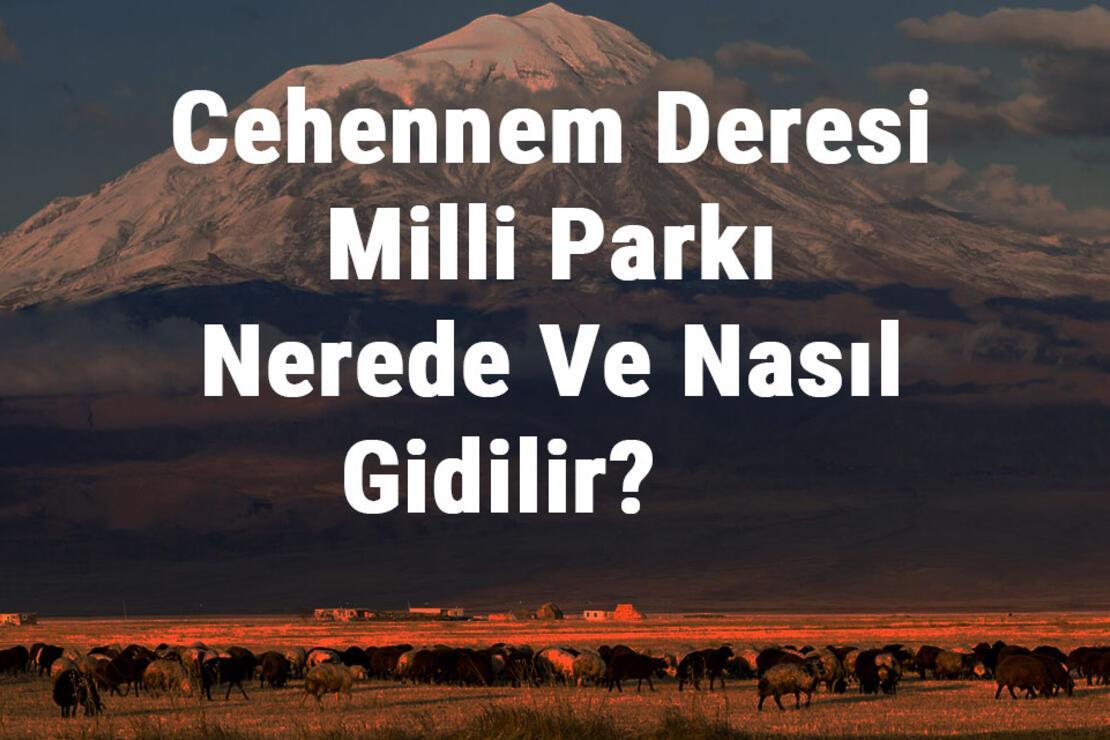 Cehennem Deresi Milli Parkı Nerede Ve Nasıl Gidilir? Cehennem Deresi Milli Parkı Konaklama, Kamp, Giriş Ücreti Ve Özellikleri Hakkında Bilgi
