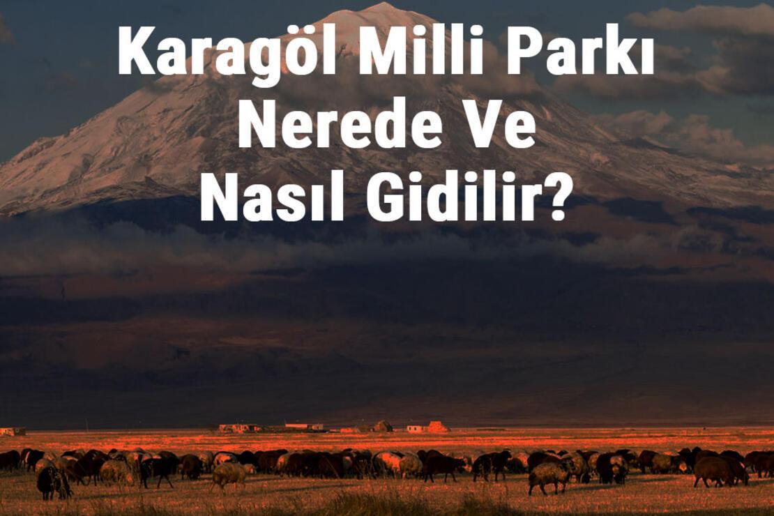 Karagöl Milli Parkı Nerede Ve Nasıl Gidilir? Karagöl Milli Parkı Konaklama, Kamp, Giriş Ücreti Ve Özellikleri Hakkında Bilgi