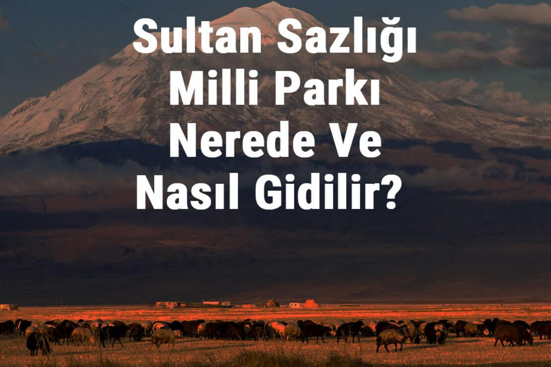 Sultan Sazlığı Milli Parkı Nerede Ve Nasıl Gidilir? Sultan Sazlığı Milli Parkı Konaklama, Kamp, Giriş Ücreti Ve Özellikleri Hakkında Bilgi