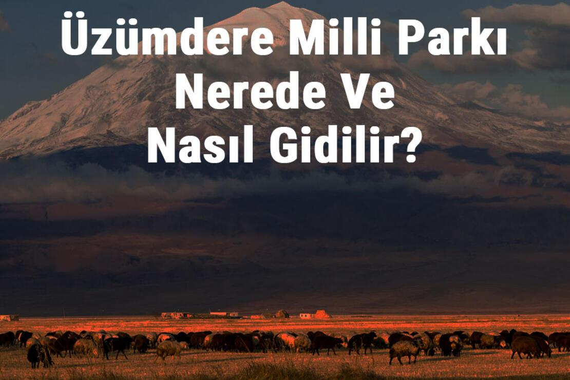 Üzümdere Milli Parkı Nerede Ve Nasıl Gidilir? Üzümdere Milli Parkı Konaklama, Kamp, Giriş Ücreti Ve Özellikleri Hakkında Bilgi