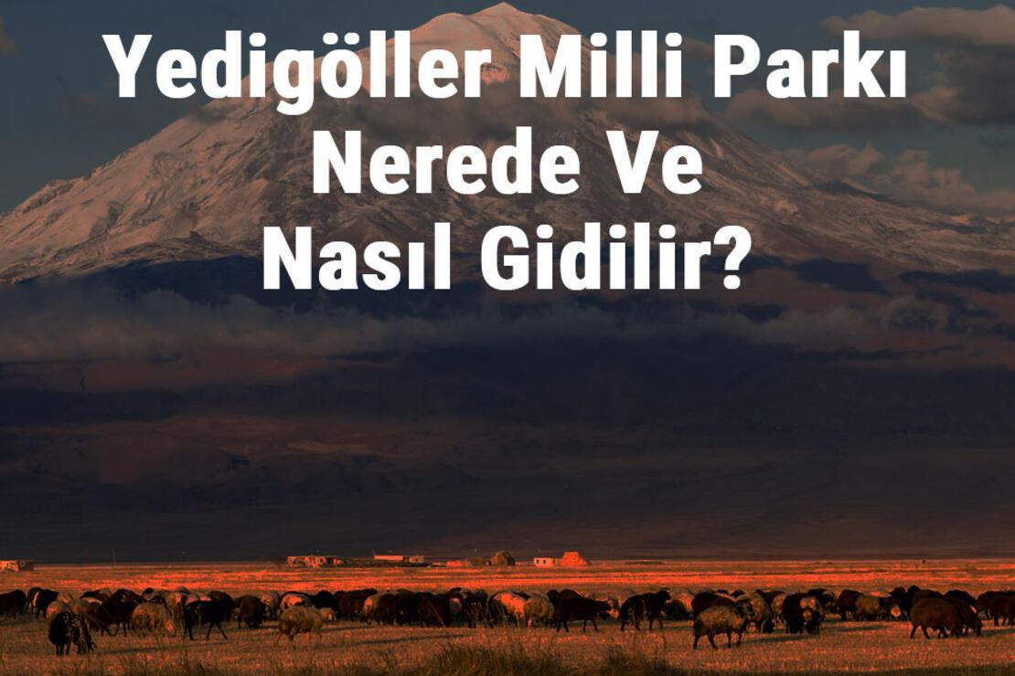 Yedigöller Milli Parkı Nerede Ve Nasıl Gidilir? Yedigöller Milli Parkı Konaklama, Kamp, Giriş Ücreti Ve Özellikleri Hakkında Bilgi