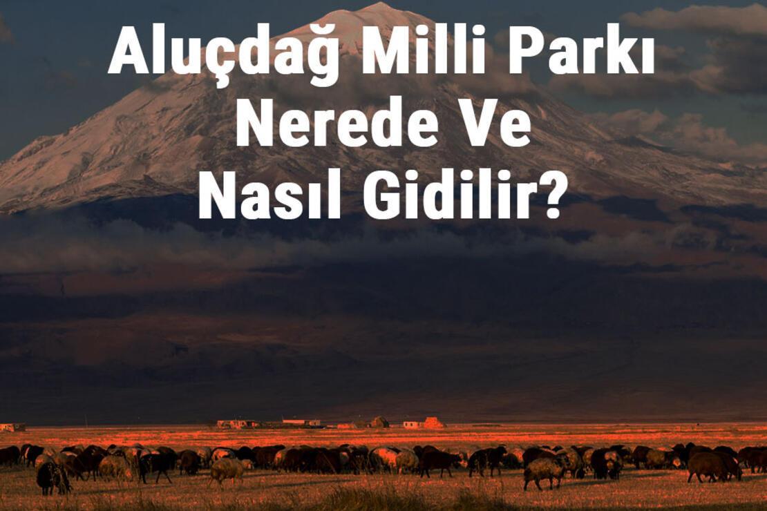 Aluçdağ Milli Parkı Nerede Ve Nasıl Gidilir? Aluçdağ Milli Parkı Konaklama, Kamp, Giriş Ücreti Ve Özellikleri Hakkında Bilgi