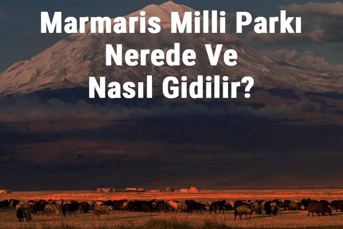 Marmaris Milli Parkı Nerede Ve Nasıl Gidilir? Marmaris Milli Parkı Konaklama, Kamp, Giriş Ücreti Ve Özellikleri Hakkında Bilgi