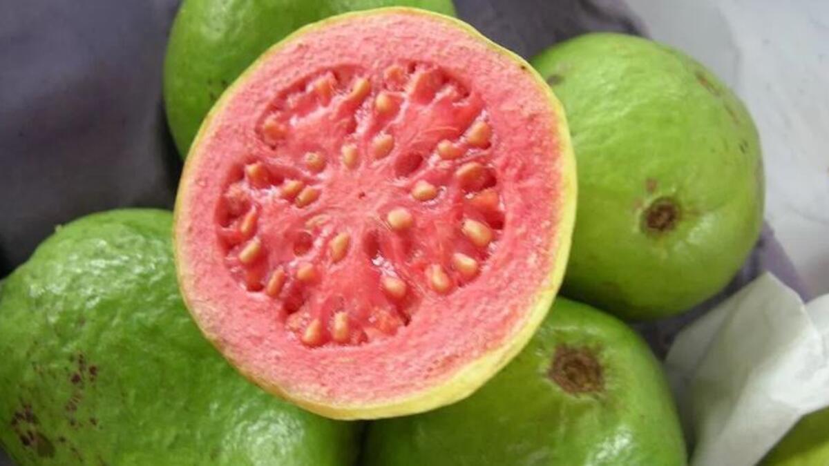 Guavanın faydaları neler? Guava meyvesi nasıl tüketilir?
