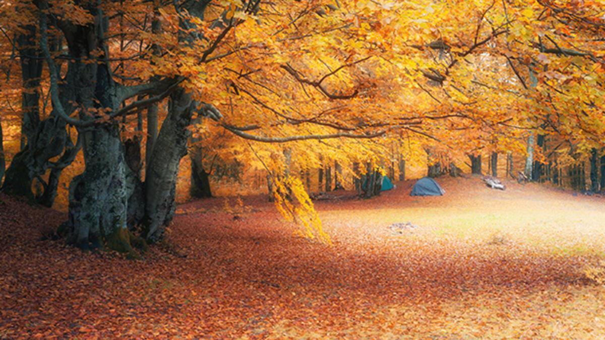 23 Eylül Sonbahar Ekinoksu'nun özellikleri nedir? Ekinoks tarihleri ne  zaman?
