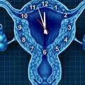 Düzensiz adet görenlerin yumurtlama dönemleri nasıl hesaplanır