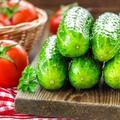 Salatalık deyip geçmeyin