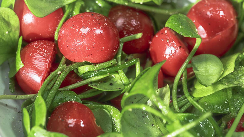 Taratorlu semizotu salatası tarifi