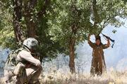 Licede 4 terörist öldürüldü, 2 terörist yakalandı
