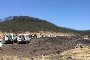 Etiyopyada uçak düştü
