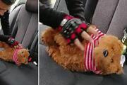 Otomobilde, oyuncak ayı içinde ruhsatsız tabanca ele geçirildi