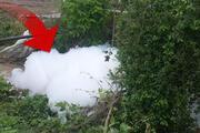 Sapanca Gölüne dökülen derede köpük oluştu