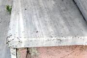 Tekirdağda mahalleyi böcekler bastı
