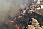 Kanarya Adalarındaki orman yangını söndürülemiyor