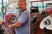 Balıkçıların kâbusu oldu