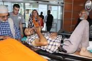 Erzurumda ayı saldırısı: 1 ölü, 2 yaralı...