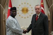 Cumhurbaşkanı Erdoğan, güven mektuplarını kabul etti